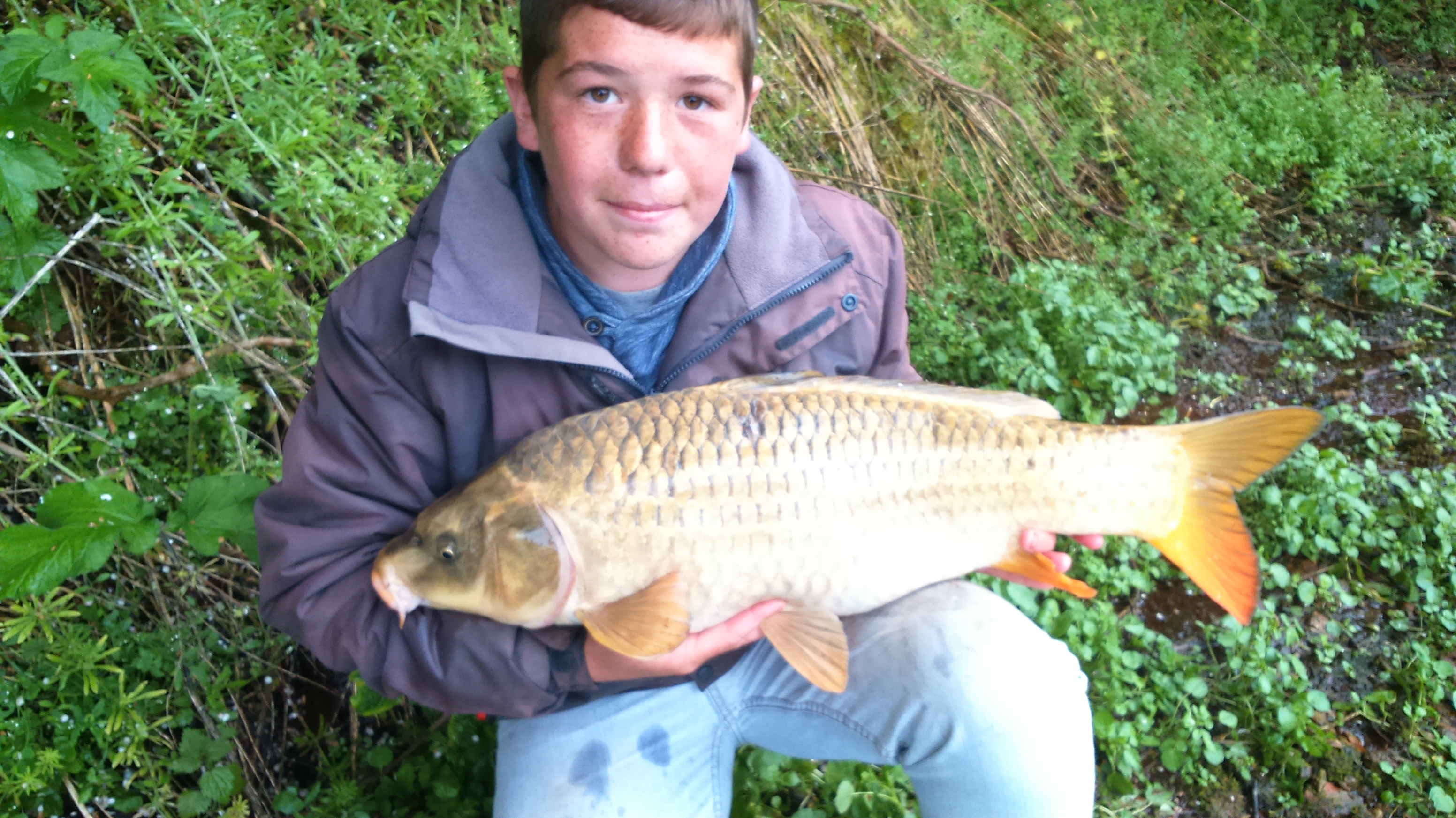 FISH OF THE WEEK Liam with kio carp caught on bread Sat 13th June