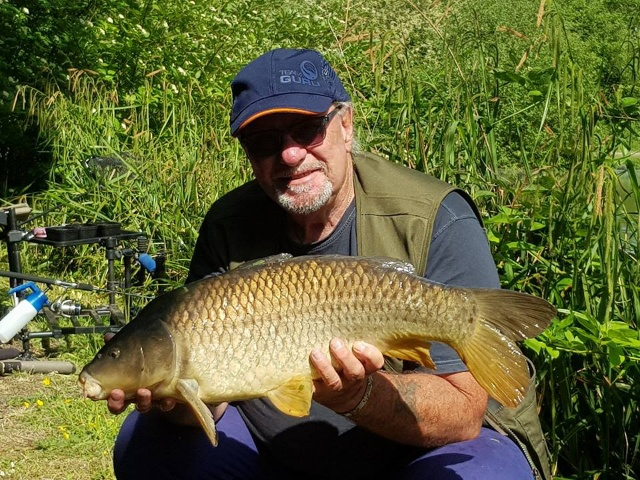 14lb 8oz COMMON CARP CAUGHT ON 9FT MATRIX FEEDER ROD 8lb LINE 18S HOOK. 29/05/18.